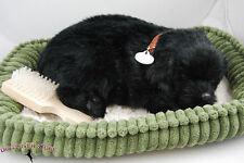Black Lab Life Like Stuffed Animal Breathing Dog Perfect Petzzz
