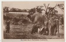 Circus, Broncho Bill's Performing Elephants Real Photo Postcard, B524