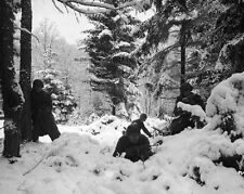 "Battle of the Bulge 290th Regiment 8""x 10"" World War II Photo Picture #98"