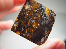 GREAT DEAL! AMAZING CRYSTALS! SENSATIONAL SEYMCHAN PALLASITE METEORITE 9 GMS