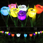 Outdoor Yard Garden Solar Powered Tulip Flower LED Light Path Way Landscape Lamp
