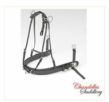 Zilco SL Shetland Driving Harness Pairs Breastplate