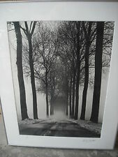 Professional European German or Dutch photography winter landscape photo