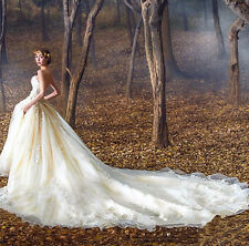Sweetheart Lace Train Wedding Dresses Quinceanera Formal Prom Party Pageant Gown