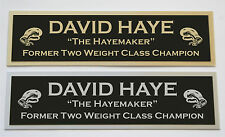 David Haye nameplate for signed boxing gloves trunks photo or case