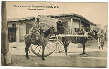 Fruit Transport, Types and Views at Tashkent Road #8, Russian Asia, 1916
