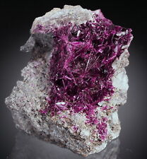 ERYTHRITE rare INTENSIVE COLOUR  lustous crystals !! MOROCCO !! /ac664