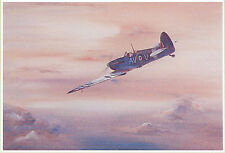 BEAUTIFUL PRINT PICTURE PAINTING FLYING INTO DUSK ROYAL AIR FORCE PLAIN