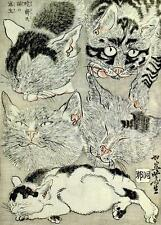 CAT, CHAT, KATZEN, FIVE, FROM PRINT BY KAWANABE KYOSAI, JAPANESE ART, MAGNET