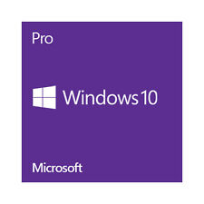 Microsoft Windows 10 Professional, 64 Bit Operating System.