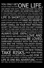"049 Motivational Inspirational - Love Your Life Quotes 14""x21"" Poster"
