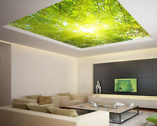 Ceiling sticker removable vinyl mural forest green leaves sun rays sky custom
