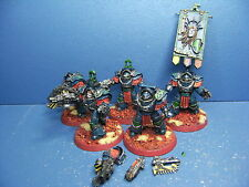 FORGEWORLD 5 Cataphractii Terminatoren der Space Marines TOP BEMALT