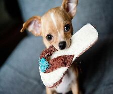 BABY CHIHUAHUA PUPPY LETS PLAY COMPUTER MOUSE PAD  9 X 7