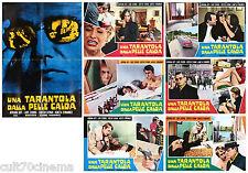 UNA TARANTOLA DALLA PELLE CALDA SET FOTOBUSTA CINEMA 6+1 USED DUETT FÖR KANNIBAL