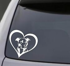 PITBULL HEART Vinyl Decal Sticker Car Window Bumper Wall I Love My Dog Rescue