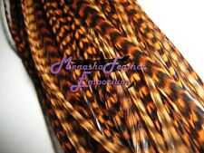 5 WHOLESALE Feather hair Extensions All Grizzly Whiting Saddle Hackle Whiting