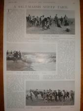 Article Sealand Farm Dee Marshes Cheshire UK 1899