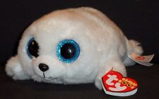 "TY BEANIE BOOS - ICY the 6"" SEAL - MINT with MINT TAGS"