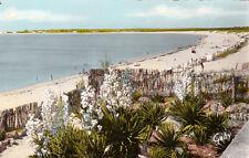 LA GRIERE-LA TRANCHE plage de la grière parc des nolleaux timbrée 1960
