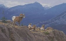 """Epic Heights"" Daniel Smith Western Fine Art Giclee Canvas - Bighorn Sheep"