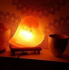 Heart Himalayan Salt Lamp with Dimmer Switch and Wood Base, UL APPROVED LAMP