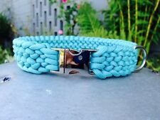 "Conquistador Paracord Dog Collar In Turquoise 17""-22"""