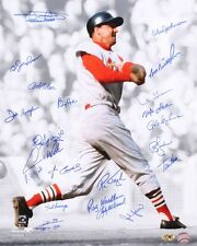 STAN MUSIAL ST LOUIS CARDINALS SIGNED 16x20 MINOSO MCDANIEL CARDENAL SAVAGE +18