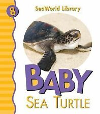 Patricia A Pingry - Baby Sea Turtle (2013) - Used - Childrens