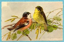 A4611 Catherine Klein postcard of red and yellow Birds on branch