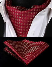 RF118RS Ren Golden Floral Dot Men Silk Cravat Scarves Ascot Tie Handkerchief Set
