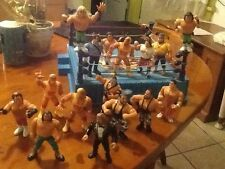 hasbro lot wwf action figures with ring