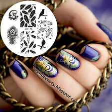 Oiseaux Dragon plume Nail Art Stamping Template Image plaque BORN PRETTY BP75