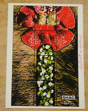 GILBERT & AND GEORGE ~ SH*G ~ VERY RARE HAND SIGNED ART POSTCARD ~ HIRST EMIN