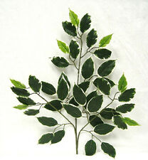 "1 HAWAII FICUS SPRAY 24 "" ~ Filler Greenery Silk Wedding Flowers Centerpieces"