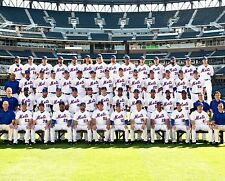 2015 NY NEW YORK METS MLB BASEBALL NATIONAL LEAGUE CHAMPIONS TEAM 8X10 PHOTO