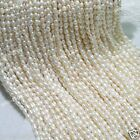 """Genuine 4-5 &5-6 &6-7 &7-8mm White Rice Freshwater Pearl Oval loose Beads 15""""AAA"""
