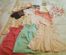 baby girls 0-6 months bundle brand new