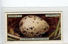 (Jc2991-100)  OGDENS,BIRDS EGGS,COMMON SANDPIPERS EGG,1923,#34