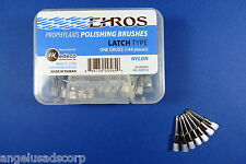 Dental Prophylaxis Polishing Brushes Brush Latch Type 144 Pcs EHROS USA