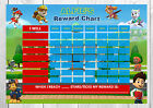 Paw Patrol A4 Reusable Reward Chart and Potty Chart- FREE PEN AND STICKERS