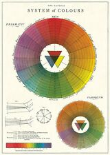 System of Colour - Color Wheel  Cavallini & Co 20 x 28 Poster Wrap