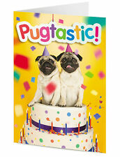 PUGTASTIC! two funny cute pug dogs in a birthday cake – HAPPY BIRTHDAY CARD