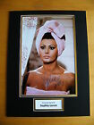 SOPHIA LOREN HAND SIGNED AUTOGRAPH 16x12 PHOTO MOUNT HOLLYWOOD ACTRESS & COA