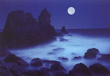 CALIFORNIA COAST - LANDSCAPE POSTER 24x36 - HARTSHORN OCEAN MOON NIGHT 36106