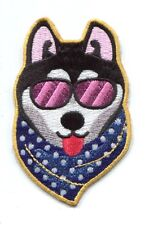 COOL DOG sunglasses & scarf EMBROIDERED IRON-ON PATCH **FREE SHIPPING** -c p3565
