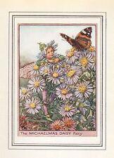 Flower fairies impression vintage: le quatrième daisy fairy
