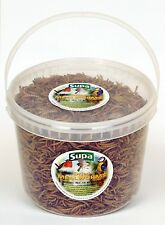 Supa Dried Mealworms Wild Bird Food Robin Blackbird Thrush Feed 5000ml 5 Litre