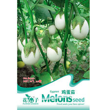 FD1228 Hot White Eggplant Seed Vegetable Seeds ~1 Pack 20 Seeds~ Free Shipping