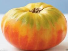 "HEIRLOOM TOMATO ""Mr. Stripey""  (50 Seeds) Great For Sandwiches, salads,Slicing"